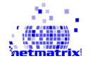 Netmatrix Top Rated Company on 10Hostings